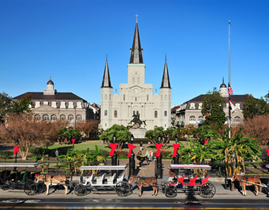 Take a tour into Cajun Country! New Orleans is rich in southern history and many exciting attractions.  Tour Laura: A Creole Plantation.  Tour the National D-day Museum.  Explore the Presbytere: The Louisiana State Museum.  Tour Jackson Square.   Tour the Aquarium of the America's.  Tour the French Quarter.